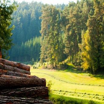 Tips voor onze houtproducten